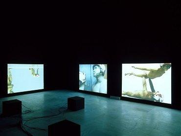Exhibition view. Katarzyna Kozyra. Señores de la danza, 2002