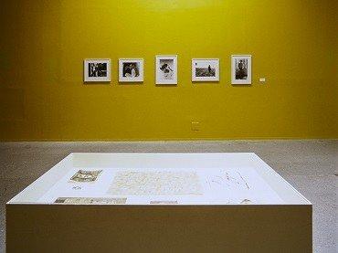 Vista de sala de la exposición. Francisco Toledo, 2000