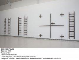 Cildo Meireles, Descala, 2003
