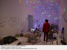 Tracey Rose (x). Vista de sala / gallery view (imagen 2)