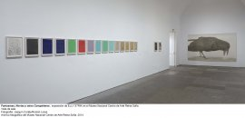 Elly Strik. Fantasmas, novias y otros compañeros, vista de sala / gallery view (imagen 6)
