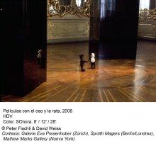 Peter Fischli / David Weiss. ¿Son los animales personas?(imagen 03)