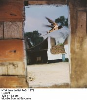 Jean-Luc Mylayne: Trazos de cielo en manos del tiempo(imagen 03)