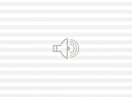 Audio de declaraciones del artista Federico Guzmán (mp3).