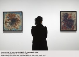 Vista de sala / gallery view Wols. El Cosmos y la Calle (imagen 1)