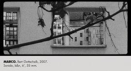 """Kineteca 2009"""