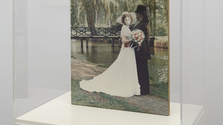 Exhibition view. Elly Strik. Ghosts, Brides and other Companions, 2014