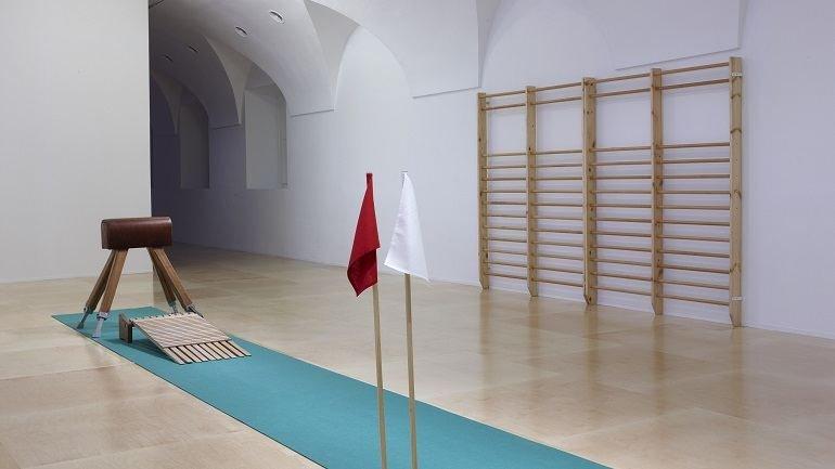 Exhibition view. Deimantas Narkevičius. The Unanimous Life, 2008