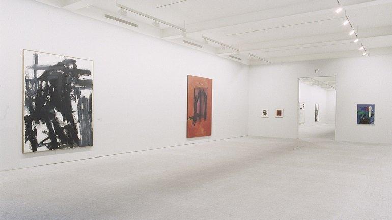 Exhibition view. Franz Kline. Arte y estructura de la identidad, 1994